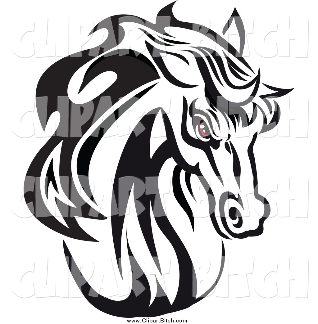 Black and White Horse Head
