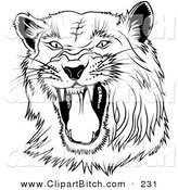 Clip Art of a Black and White Hissing Panther on a White BackgroundBlack and White Hissing Panther on a White Background by Dero