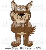 Clip Vector Art of a Brown Wolf School Mascot Standing with His Arms Crossed by Toons4Biz