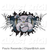 Clip Vector Art of a Tough Gray Bulldog in a Spiked Collar, Tearing a Hole Through a Wall or Paper and Looking Through by Paulo Resende